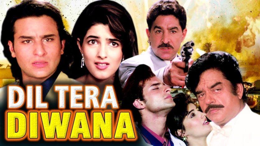 Dil Tera Diwana (1996) Bluray Google Drive Download