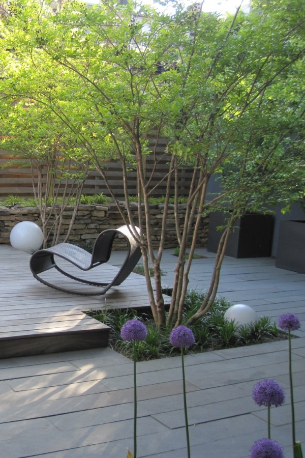 trees contemporary garden