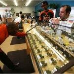 Sugriežtinus narkotikų įstatymą, sunkumų kils marihuanos augintojams