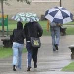 Gauta daugiau nei 1300 pranešimų apie audros  padarytą žalą