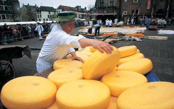 25073_fullimage_Cheese_market_in_Alkmaar_1086_560x350
