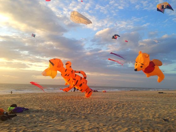 kite-flying-on-Texel-560x420