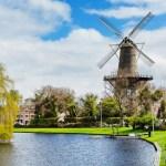 Nyderlandai viešų susirinkimų draudimą pratęsė iki birželio 1-osios