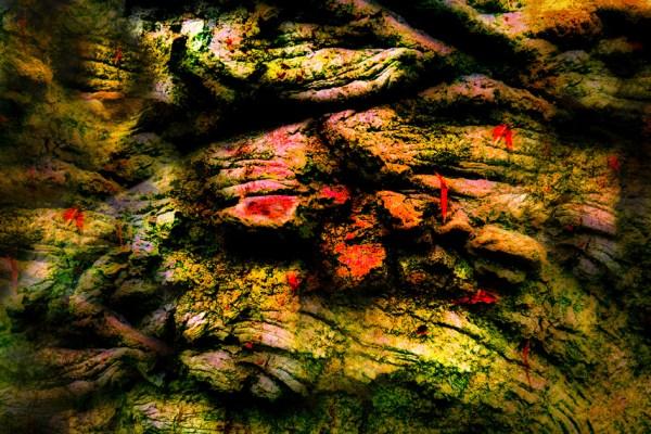 Neue Serie: Holzbilder