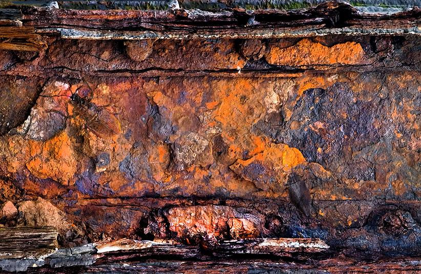 Rostgemälde Suchbild: Camouflage