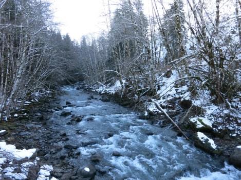 'Many a river Oregon has.'