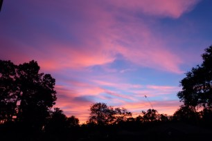 There have been some stunning skies since I've been back.