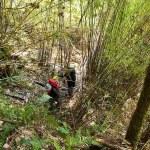 9. Passaggio nella foresta (ph E. Ferri – K2014.it)
