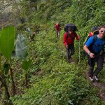 3. Siamo ancora sul sentiero. Da domani foresta totale per 5 giorni (ph E. Ferri – K2014.it)