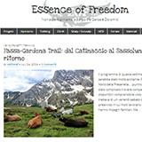 Mattia Bonanome_blog