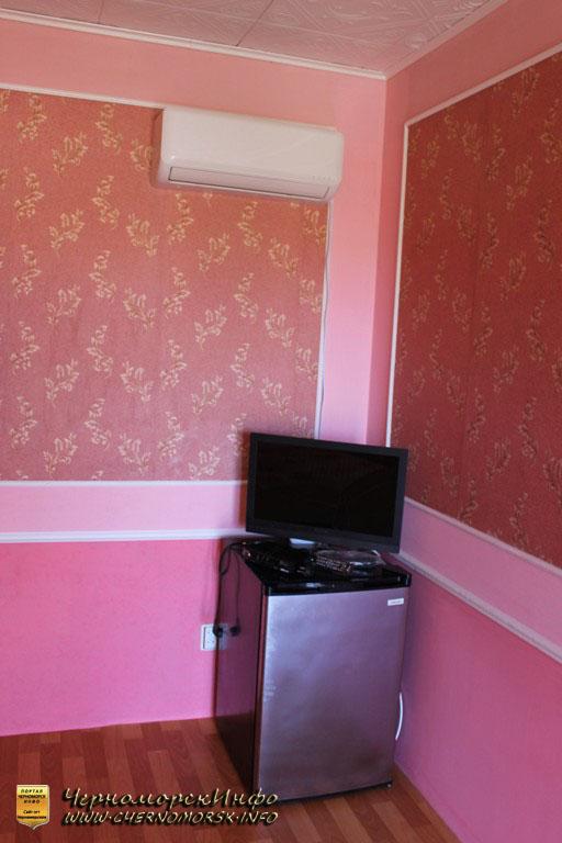 холодильник и телевизор в номере
