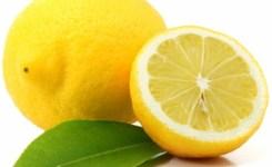 Sitron – Lemon