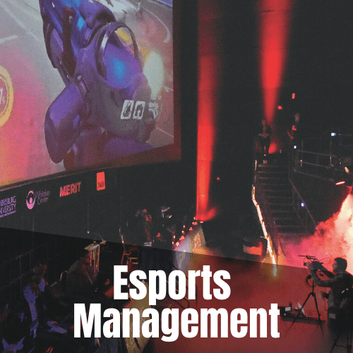 Bachelor of Science in Esports Management, Production, and Performance