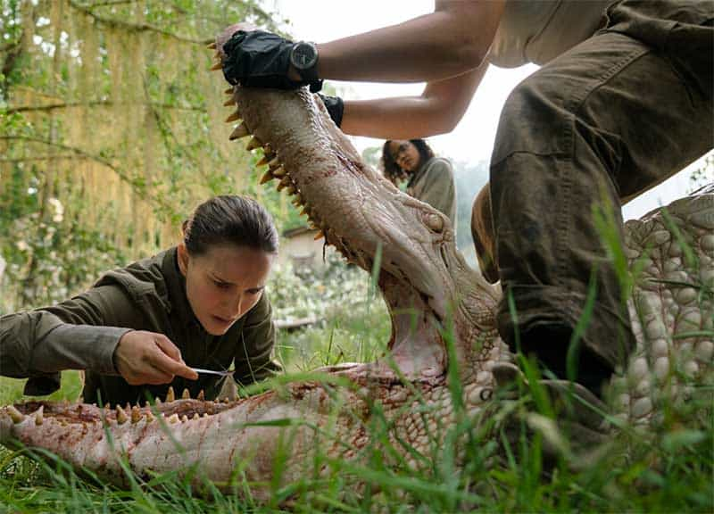Watch This: Trailer for Annihilation
