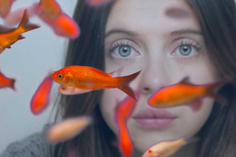 Bel Powley in Carrie Pilby