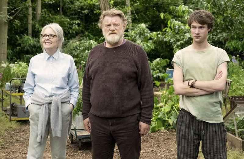 Diane Keaton, Brendan Gleeson and Hugh Skinner in Hampstead