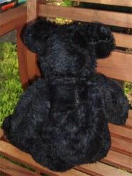 blackbear3