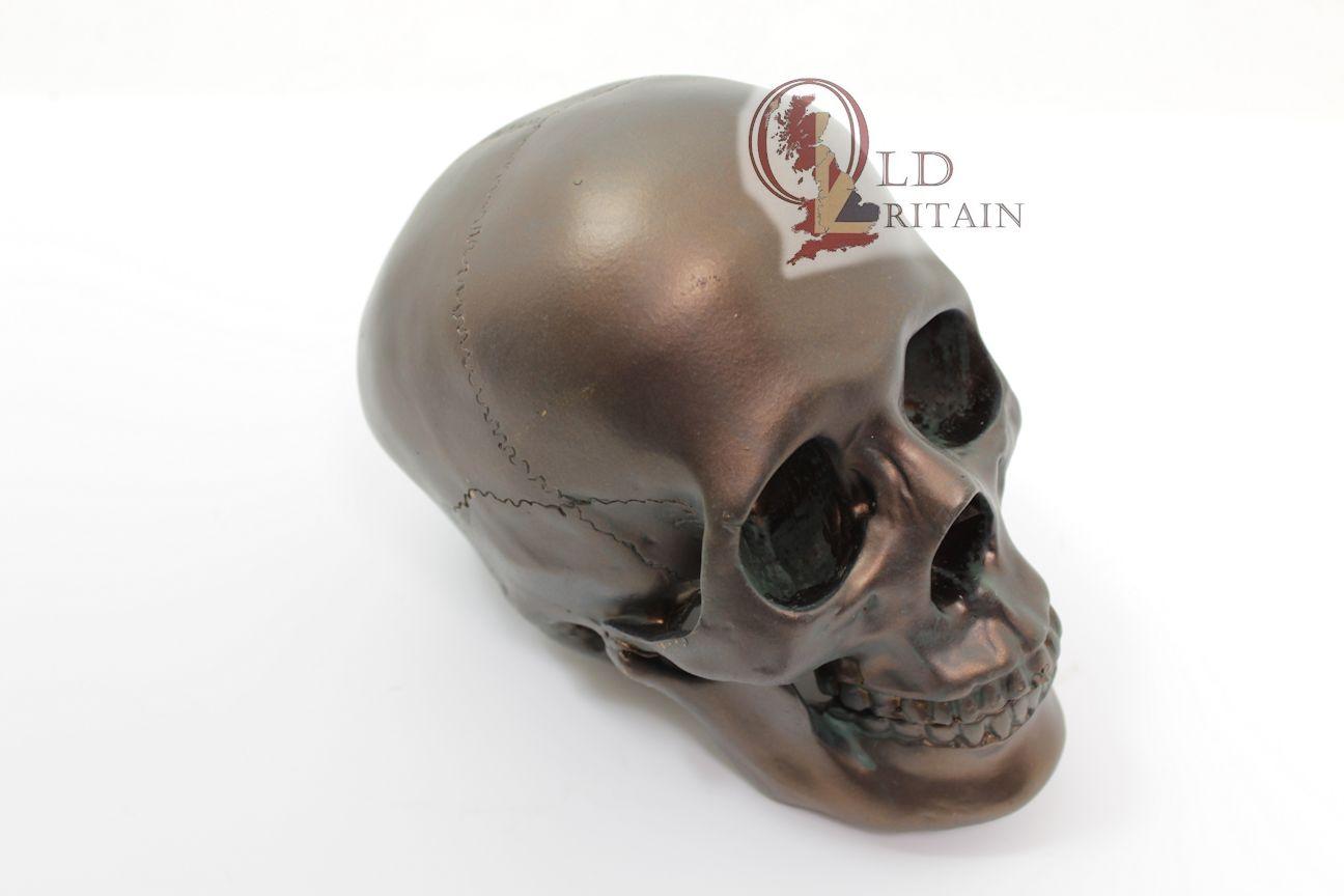 Skull Ornaments Human Bone Head Model Sculpture