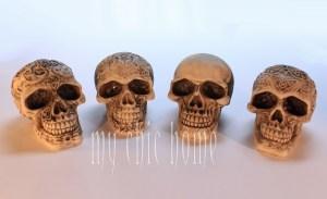 Mini Human Skulls