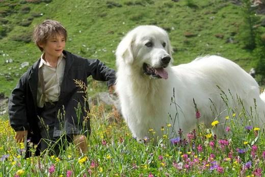 Najlepsze filmy dla młodzieży - Bella i Sebastian