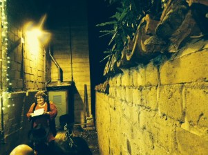 Cynthia Bryant reading at Back Alley Poetry, October 7th 2014