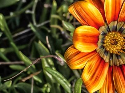 Bright Autumn--19