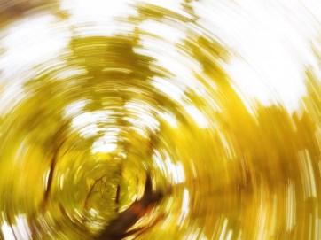 Bright Autumn--73