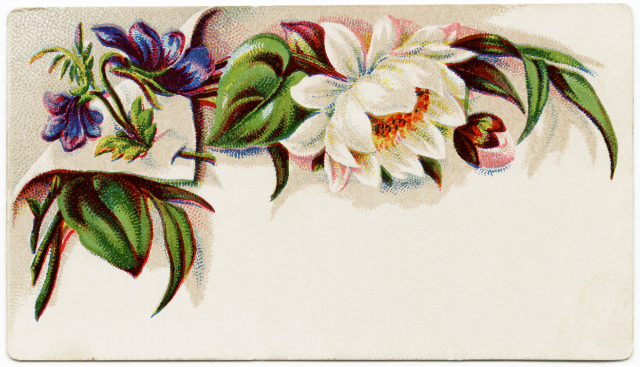 Vintage Business Card Graphic Old Design Shop Blog