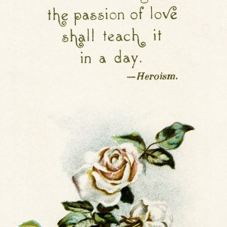 Emerson Love Poem and Rose Illustration