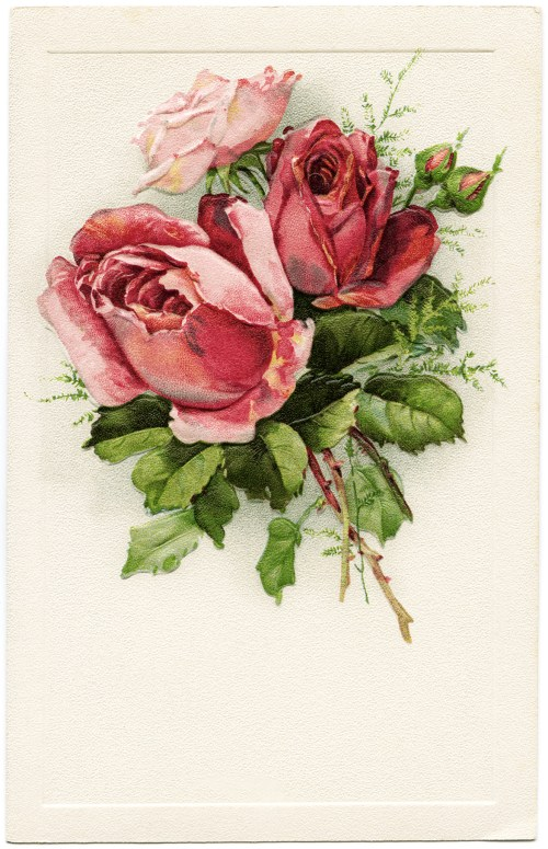 small resolution of free vintage clip art postcard roses