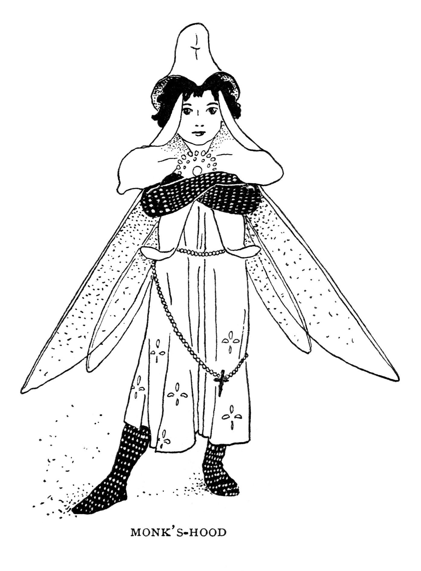 Monk S Hood Storybook Character