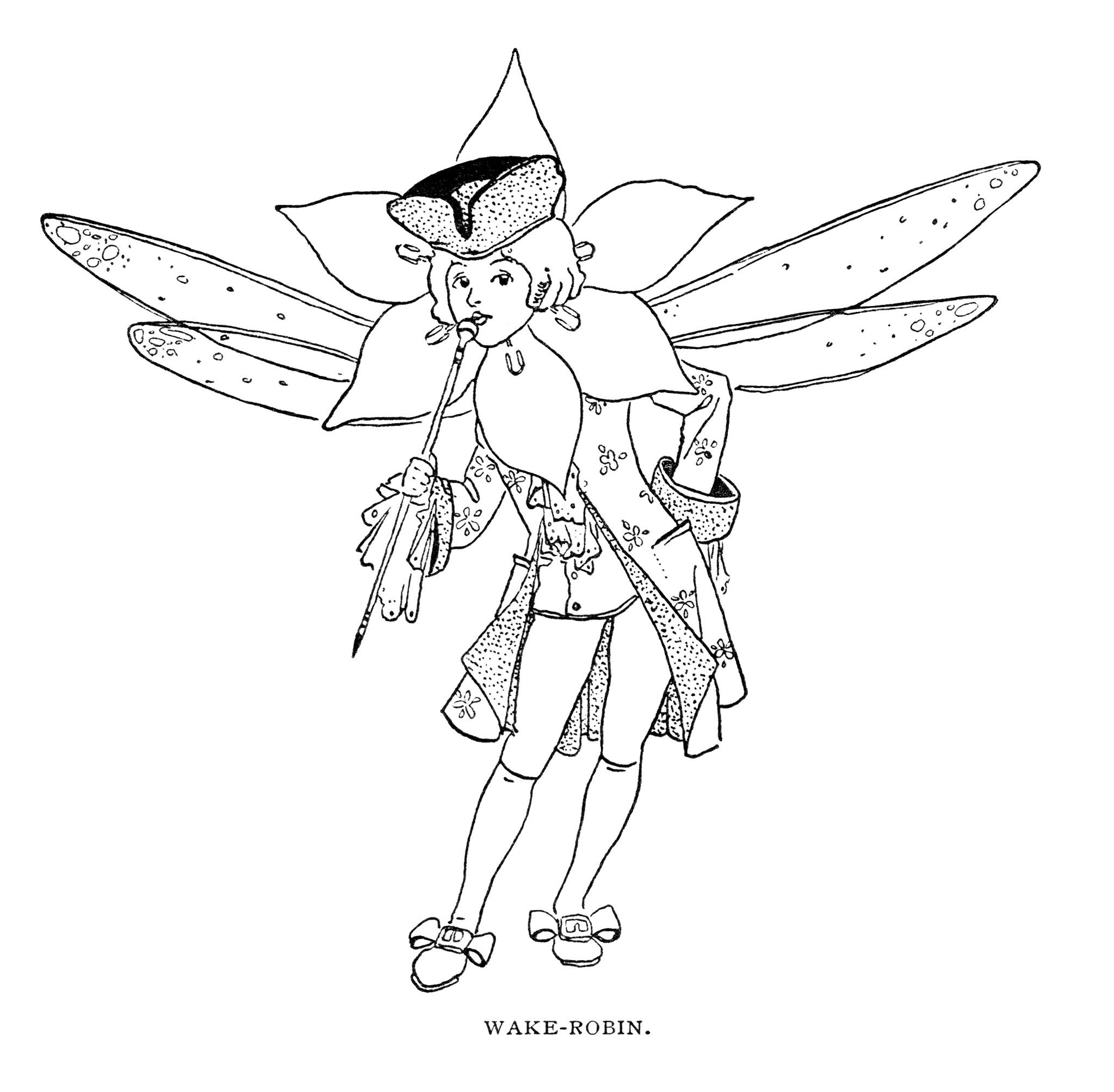Free Vintage Image Wake Robin Storybook Character