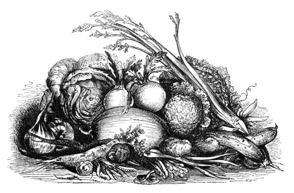 fall harvest display of vegetables