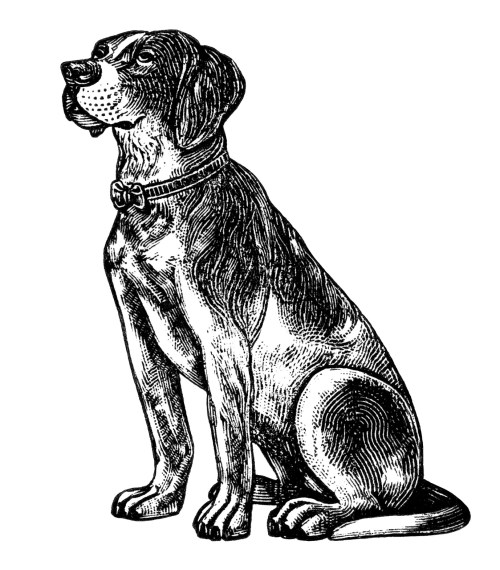 small resolution of  free vintage dog clipart black and white clip art digital pet image dog