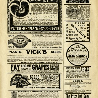 Vintage Garden Seeds Magazine Advertising