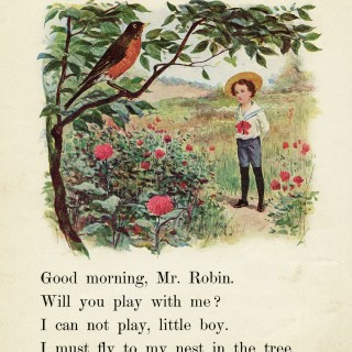 Robin and Boy Vintage School Reader Page ~ Free Digital Image