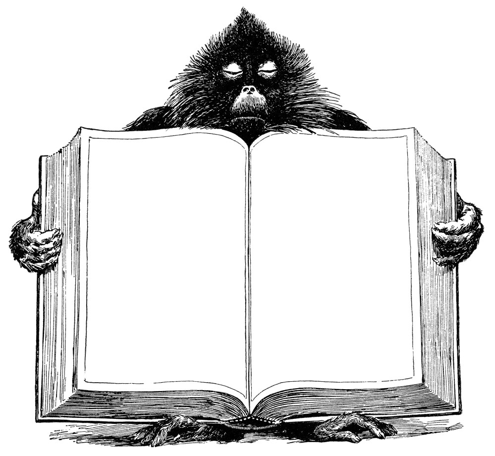 medium resolution of  baboon holding book unique vintage clipart black and white graphics open book blank