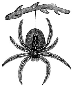 vintage spider clip art, black and white graphics, vintage halloween clipart, hanging spider illustration, creepy insect engraving