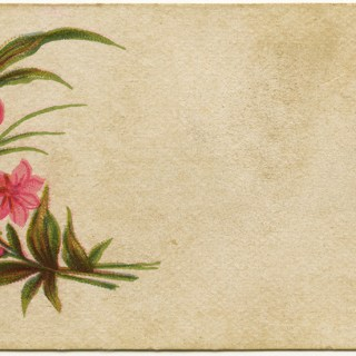 Shabby Victorian Calling Cards