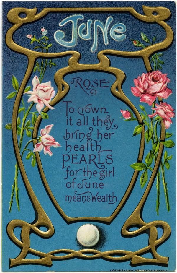 June Rose Vintage Postcard - Design