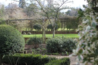 View across the garden from the kitchen window