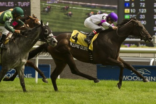 Toront Ont.July 21,2013.Woodbine Racetrack.R8 Nijinsky Stakes So Long George Jockey Emma-Jayne Wilson.WEG/michael burns photo