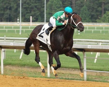 MR JAGERMEISTER - The Chesapeake Stakes - 08-17-19 - R05 - CNL - Tight Finish
