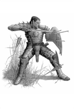Half-elf Paladin