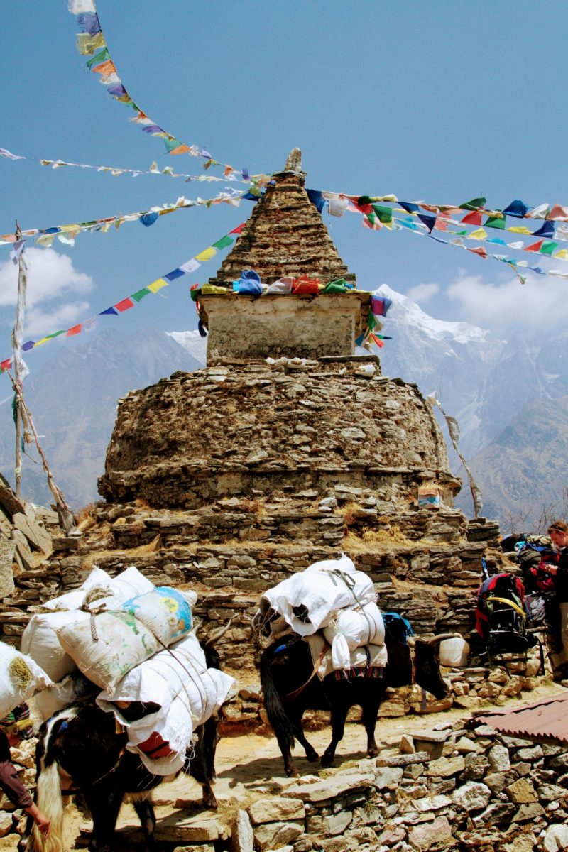 Namche to Dole