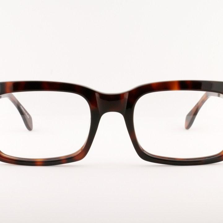 Oldfocals I Ironsides I Tortoise(2)
