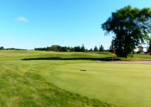 Cloverdale Links Hole 3 green - red flag