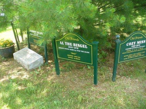 170529-04 marker Al the Bingel