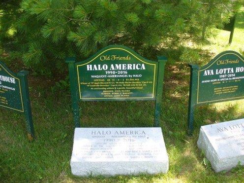 170529-04 marker Halo America