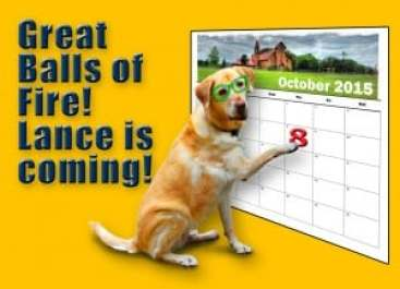 Even the WAG Rescue mascot has the date on his calendar!